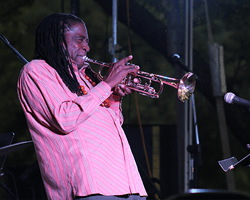 Professional jazz player playing trumpet at Jazz Festival