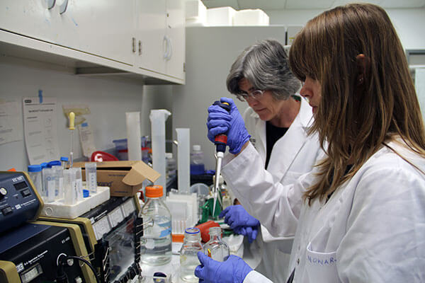 Ewa Nowara in the lab with S. Colette Daubner, Ph.D.