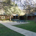 Shady courtyard with picnic tables in the center of Adele Hall