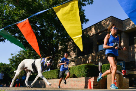 Joggers and dogs join in the StMU 5K.