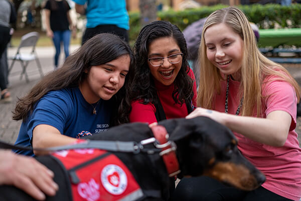 Students are excited to pet a therapy dog